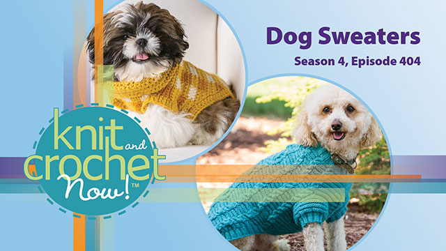 Knit and Crochet Now! Season 4, Episode 404: Dog Sweaters video