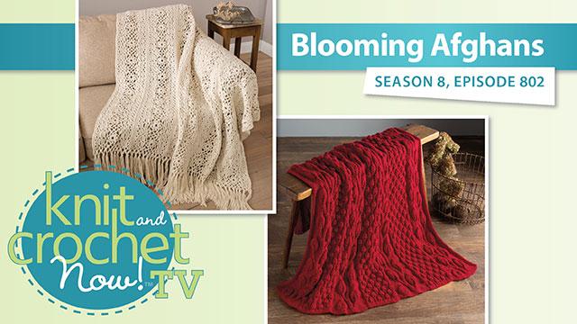 Knit and Crochet Now!: Knit and Crochet Now! Season 8: Blooming Afghans