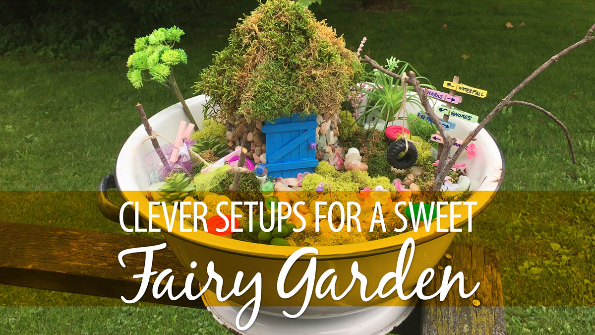 Clever Set-Ups for a Sweet Fairy Garden video