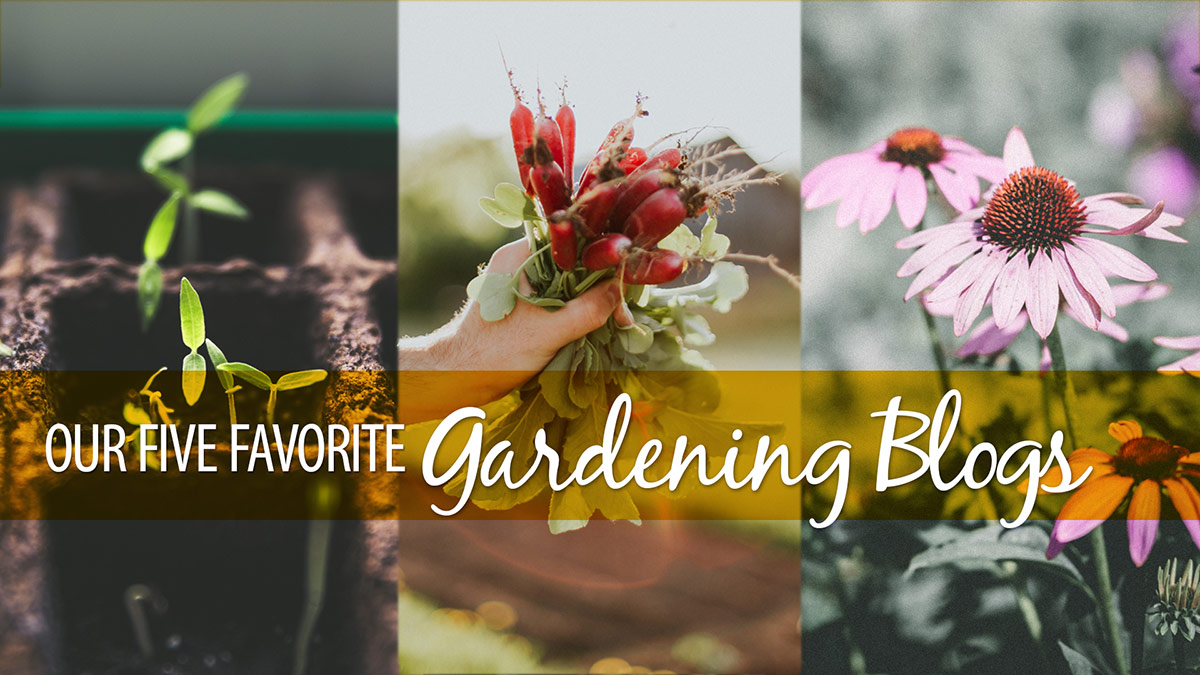 Creative Living: Our Five Favorite Gardening Blogs
