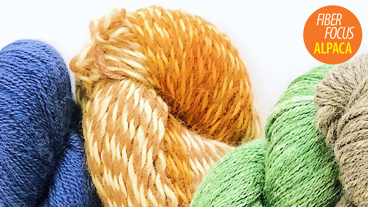 Quick Stitches & Tips: Fiber Focus: Alpaca