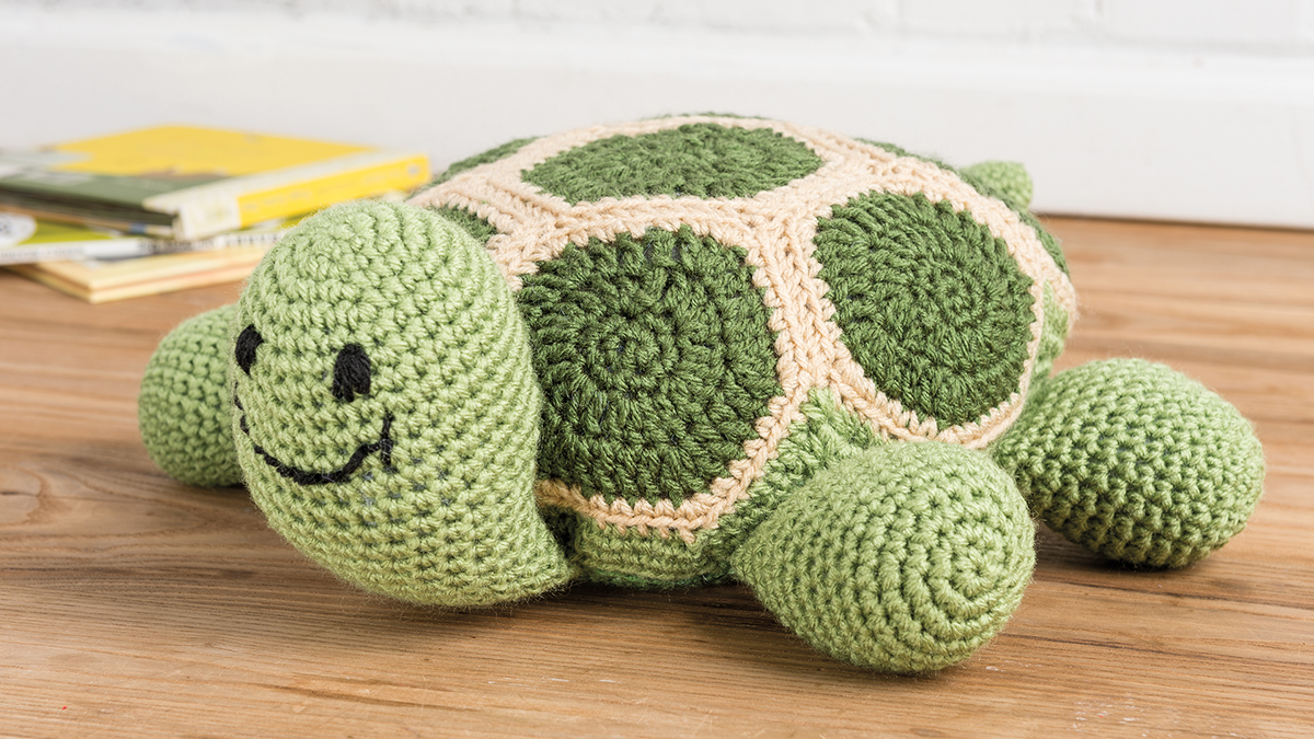 Learn, Make, Create!: Turtle Time Pillow
