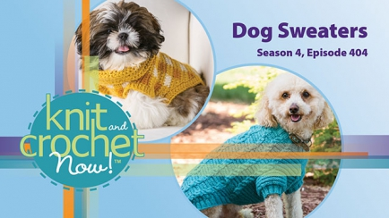 Knit and Crochet Now! Season 4, Episode 404: Dog Sweaters