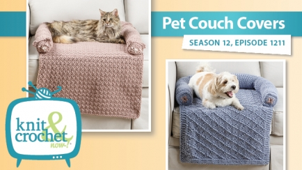 Pet Couch Covers