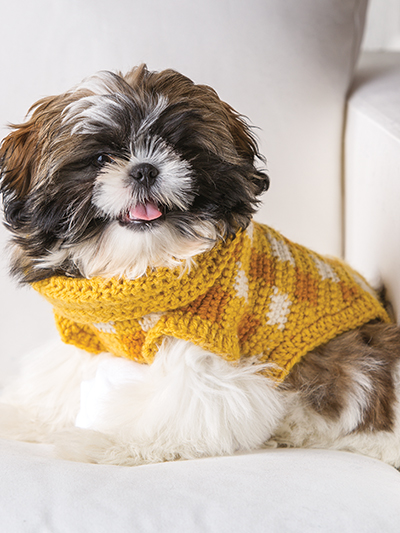 Gingham-Style Crochet Dog Sweater