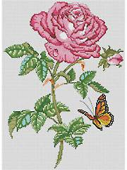 Rose Beauty Cross Stitch Pattern