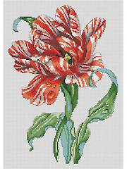 Striped Parrot Tulip Cross Stitch Pattern
