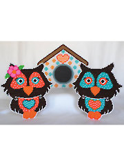 Lovely Owls With House