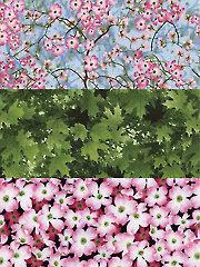Botanic Garden 2 - 1 Yard Cuts - 3/pkg.