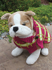 Poppy's Plaid Crochet Dog Sweater