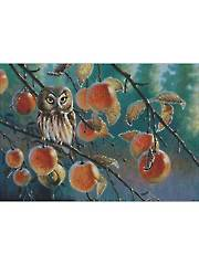 Owl with Apples Cross Stitch Pattern