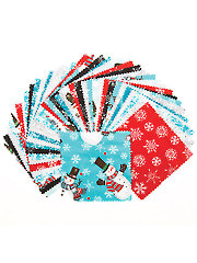 Frosty Fun Charm Pack - 42/pkg.