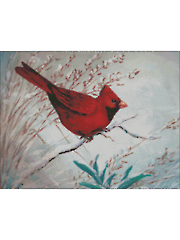 Winter Red Bird