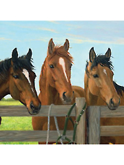 "Three Horses Digital Panel 36"" x 44"""