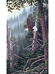 """Beyond the Forest Digital Panel 24"""" x 42"""""""