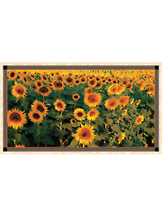 "Tuscan Sunflower Panel 44"" x 24"""