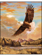 "Majestic Eagle Digital Panel 36"" x 44"""