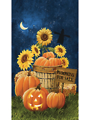 "Pumpkins for Sale Panel 24"" x 43"""
