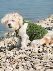 Dapper Dog Crochet Pattern