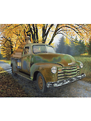 "Fun Ride Truck Digital Panel 35 1/2"" x 44"""