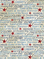 Stars & Stripes VI Script 1/2 Yard Cut