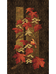 "Red Maplewood Panel 24"" x 43"""