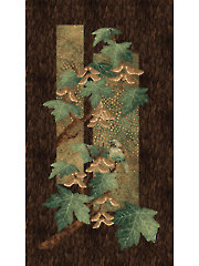 "Green Maplewood Panel 24"" x 43"""