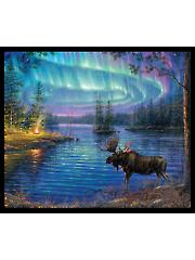 """Northern Lights Panel 36"""" x 44"""""""