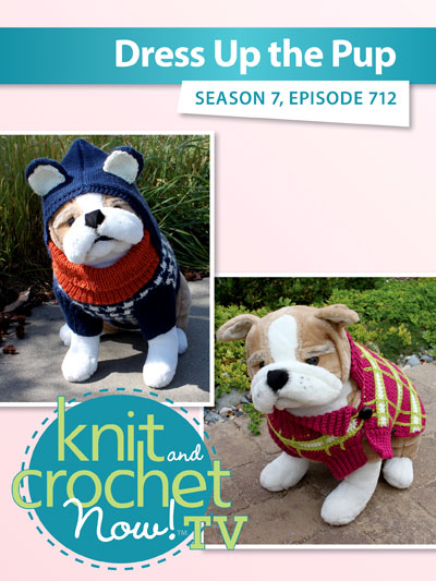 Knit And Crochet Now Season 7 Dress Up The Pup