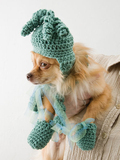 Quick Easy Crochet Patterns Dog Hat Scarf Bootie Set Crochet
