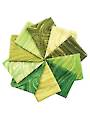 Sandscapes Moss/Apple Fat Quarters - 10/pkg.