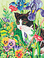 Kitty in Flowers Pencil By Number Kit