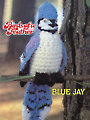Birds of a Feather - Songbirds Series Crochet Patterns