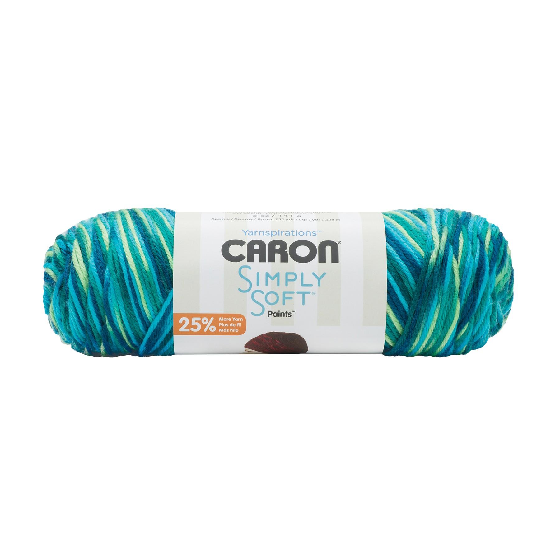 Caron® Simply Soft® Paints