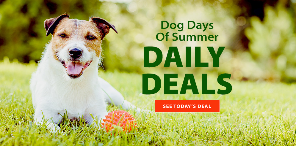 Dog Days of Summer - DAILY DEALS - See today's deal!