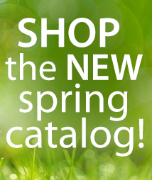 New Spring Catalog (catck) all items
