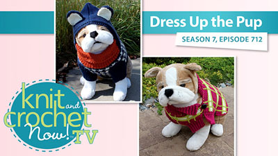 Dress Up The Pup